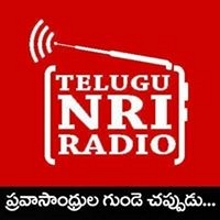 Telugu NRI Radio - Radio Channel Live Streaming -  views